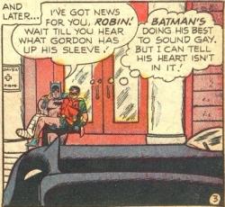Batman Robin Gay